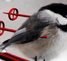 LITTLE BIRD ON SKIS-COME SKI WITH ME BIRD PILLOW Sticker