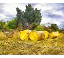 Hay Roll Landscape Photographic Print