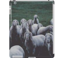 Sheep gang landscape animal photography iPad Case/Skin