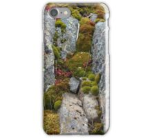 Small World I iPhone Case/Skin