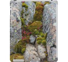 Small World I iPad Case/Skin