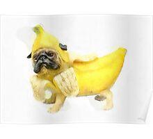 Pug Banana Watercolor Poster