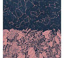 Constellation  Photographic Print