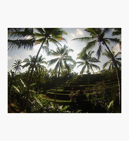 Bali Indonesia Photographic Print