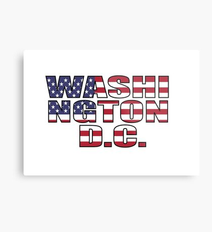 Washington D.C Metal Print