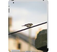 Wagtail on a wire iPad Case/Skin