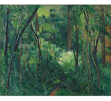 Paul Cezanne - Interior of a forest 1880 - 1890 Photographic Print