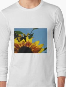 Alberta Sunflower Blue Sky Long Sleeve T-Shirt