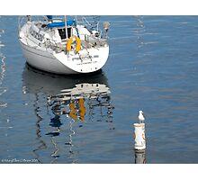 Sea Sentinel, Fisherman's Wharf Monterey Photographic Print