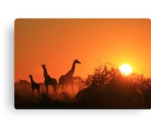 Giraffe Silhouette - African Wildlife Background - Going to the Sun Canvas Print