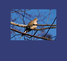 Mourning Dove In Winter Light Unisex T-Shirt