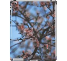 Almond Blossoms iPad Case/Skin