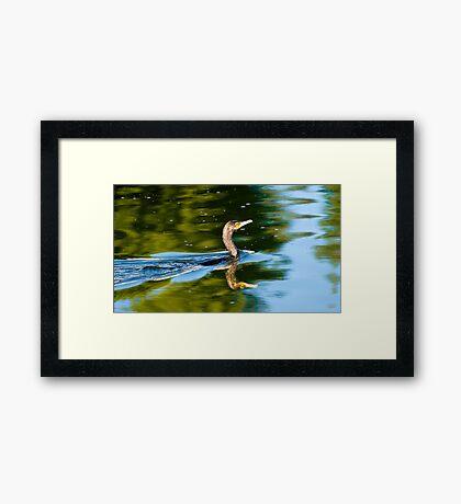 Sunrise Hunt Framed Print