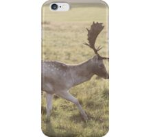Autumn Buck iPhone Case/Skin