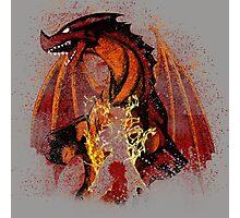 The Dragon Slayer Story Photographic Print