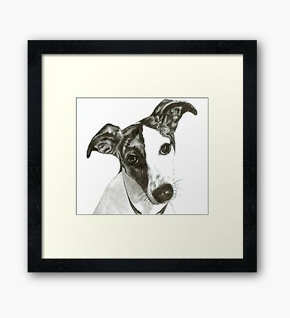 Black and White Dog Framed Print