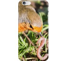 A Robin's Slippery Meal iPhone Case/Skin