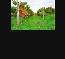 Autumn Grape Vines Near Abbazia Rosazzo Mens V-Neck T-Shirt