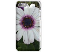 White Daises  iPhone Case/Skin