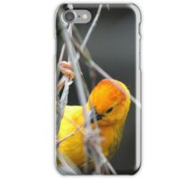 Weaver II iPhone Case/Skin