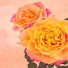 Bursting Of Beauty Orange Roses by daphsam