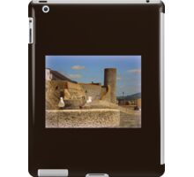 Historic Lyme Regis iPad Case/Skin