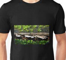 Brackets and Hyanciths Unisex T-Shirt