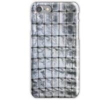 Glass & Snow iPhone Case/Skin