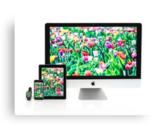 Multiscreen - Apple Watch, iPhone, iPad and iMac screens  Canvas Print