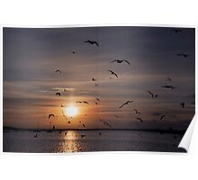 Waterside Sunset Poster
