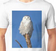 Owl Totem Unisex T-Shirt