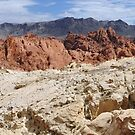 Nevada Desert Colors  by clizzio
