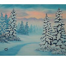 Early To Rise, winter scene Photographic Print