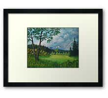 Late Spring Meadow Framed Print