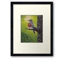 Red Breast Perch Framed Print