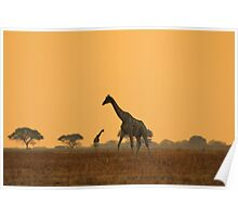 Giraffe Silhouette - African Wildlife Background - Magnificent Freedom Poster