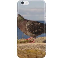 Pigeon On Pier Wall iPhone Case/Skin