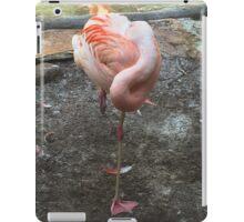Sleeping Flamingo  iPad Case/Skin