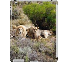 Lions iPad Case/Skin