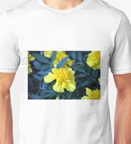 Spring Flower Series 5 Unisex T-Shirt