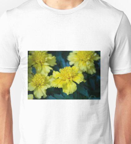 Spring Flower Series 6 Unisex T-Shirt
