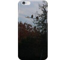 Vultures iPhone Case/Skin