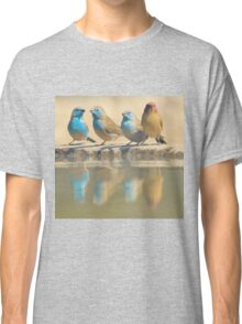 Exotic Colorful Wild Birds from Africa - Blue and Violet-eared Waxbill - Colors in Nature Classic T-Shirt