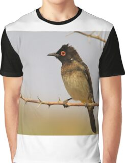 Red-eyed Bulbul - Exotic Colorful Wild Birds from Africa Graphic T-Shirt