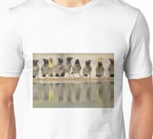 Colorful Exotic Wild Birds from Africa - Water is Life - Bulbul and Weaver Unisex T-Shirt