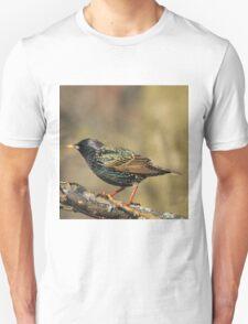 European Starling - Colorful Wild Birds - Iridescent Green Unisex T-Shirt