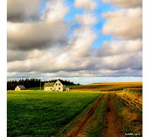 Dirt Road to Old Homestead Photographic Print