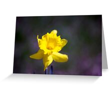 Spring Flower Series 20 Greeting Card