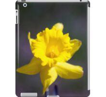 Spring Flower Series 20 iPad Case/Skin