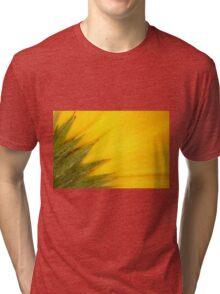 Juicy Fruit Tri-blend T-Shirt